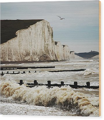 Seven Sisters Chalk Cliffs Wood Print by Peter Funnell