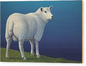 Sheep At The Edge Wood Print by James W Johnson