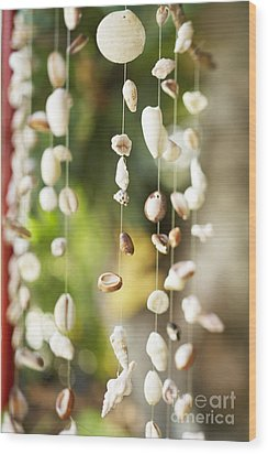 Shell Windchimes Wood Print by Kyle Rothenborg - Printscapes