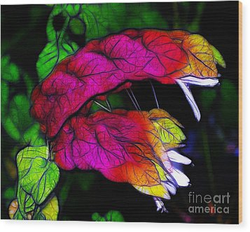 Shrimp Plant Wood Print by Judi Bagwell