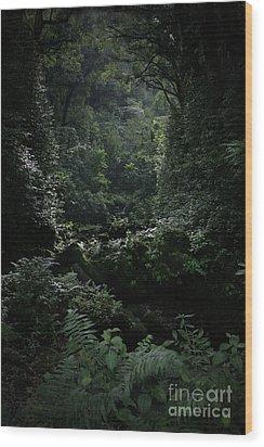 Silence Is Round Me   - Mokulehua Wood Print by Sharon Mau