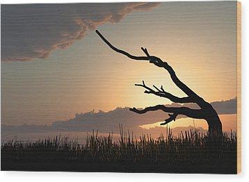 Silhouette Wood Print by Bob Orsillo