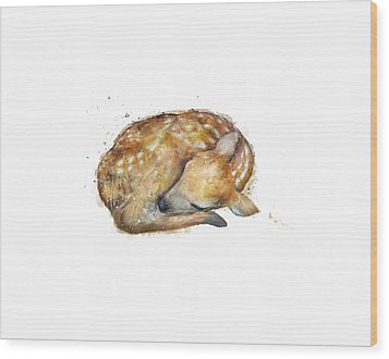 Sleeping Fawn Wood Print by Amy Hamilton