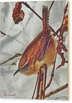 Slim Pickens, Carolina Wren Wood Print by Ken Everett