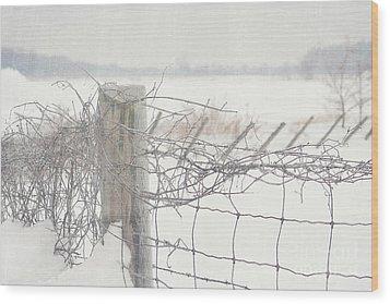 Snow Fence Wood Print by Sandra Cunningham