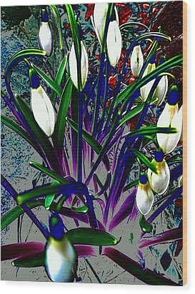 Snowdrops In Abstract  Wood Print by Beth Akerman
