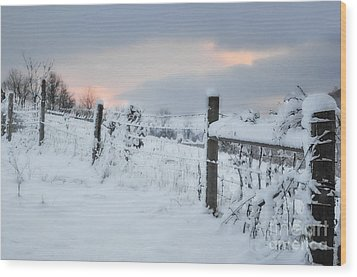 Snowy Day Wood Print by Kathy Jennings