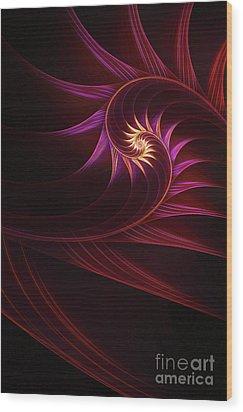 Spira Mirabilis Wood Print by John Edwards