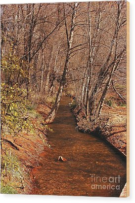 Spring At Red Rock Crossing Wood Print by Marilyn Smith