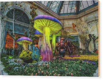 Spring Mushrooms Wood Print by Stephen Campbell