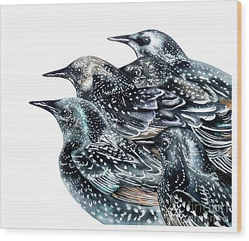 Starlings Wood Print by Marie Burke