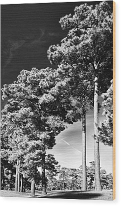 Stillness Wood Print by Gerlinde Keating - Galleria GK Keating Associates Inc