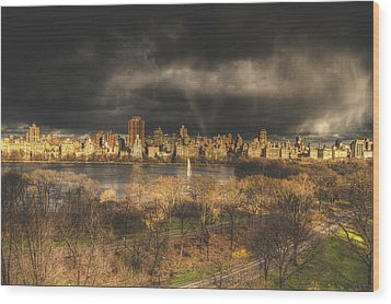 Storm Over The Park Wood Print by Ariane Moshayedi