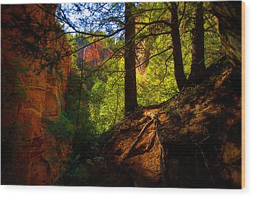 Subway Forest Wood Print by Chad Dutson