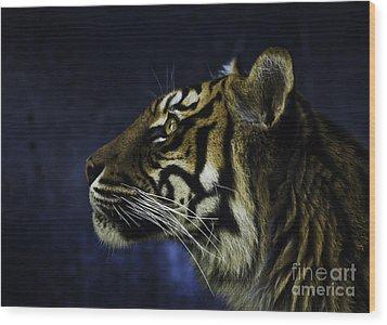 Sumatran Tiger Profile Wood Print by Avalon Fine Art Photography