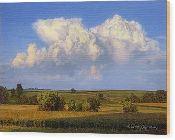 Summer Evening Formations Wood Print by Bruce Morrison