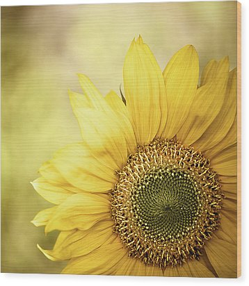 Sunflower Blossom With Bokeh Background Wood Print by Elisabeth Schmitt