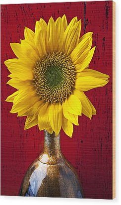 Sunflower Close Up Wood Print by Garry Gay