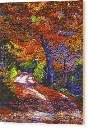 Sunlight Through The Trees Wood Print by David Lloyd Glover