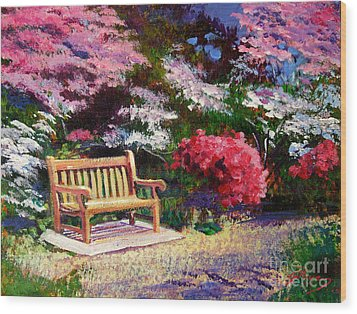 Sunny Bench Plein Aire Wood Print by David Lloyd Glover