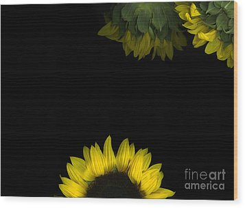 Sunrise Wood Print by Christian Slanec