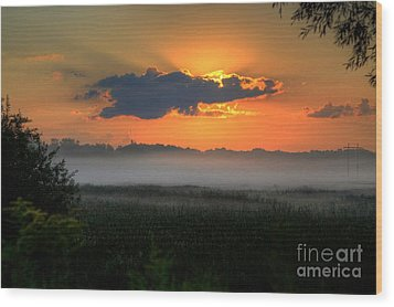 Sunrise In The Swamp-3 Wood Print by Robert Pearson