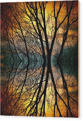 Sunset Tree Silhouette Abstract 3 Wood Print by James BO  Insogna