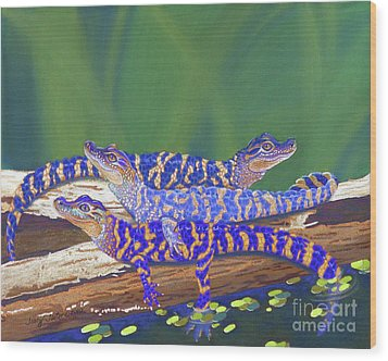 Swamp Babies Wood Print by Tracy L Teeter