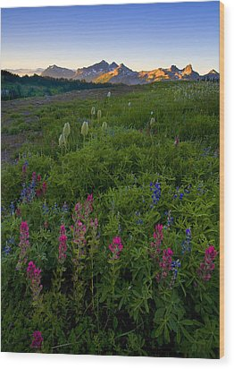 Tatoosh Dawn Wood Print by Mike  Dawson