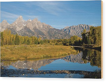 Teton Reflections Wood Print by Steve Stuller