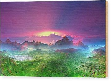 Texas  Country Digital Painting Wood Print by Heinz G Mielke