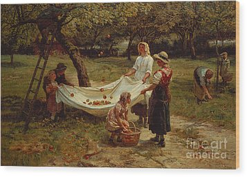 The Apple Gatherers Wood Print by Frederick Morgan