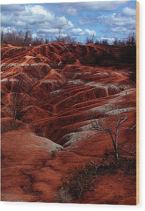The Badlands Wood Print by Cabral Stock