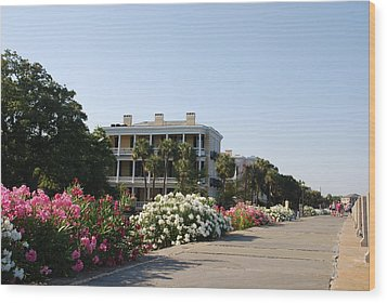 The Flowers At The Battery Charleston Sc Wood Print by Susanne Van Hulst