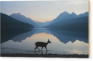 The Grace Of Wild Things Wood Print by Dustin  LeFevre