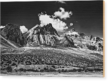 The High Andes Monochrome Wood Print by Steve Harrington