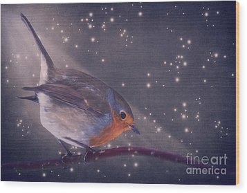 The Little Robin At The Night Wood Print by Angela Doelling AD DESIGN Photo and PhotoArt
