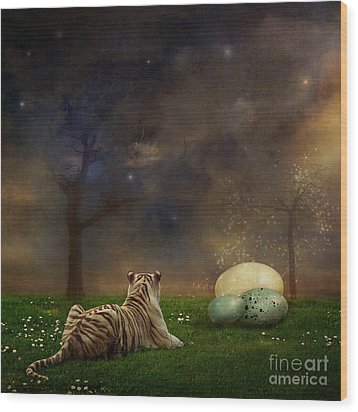 The Magical Of Life Wood Print by Martine Roch