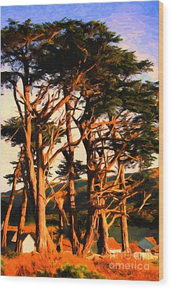The Old Grove At The Ranch At Sunset . 40d4531 . Painterly Wood Print by Wingsdomain Art and Photography