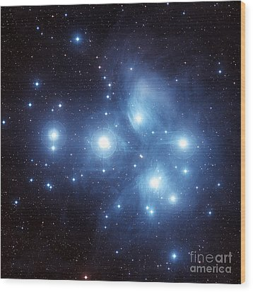 The Pleiades Star Cluster Wood Print by Charles Shahar