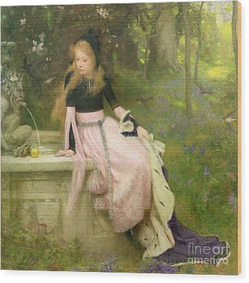 The Princess And The Frog Wood Print by William Robert Symonds