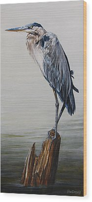 The Sentinel - Portrait Of A Great Blue Heron Wood Print by Rob Dreyer AFC
