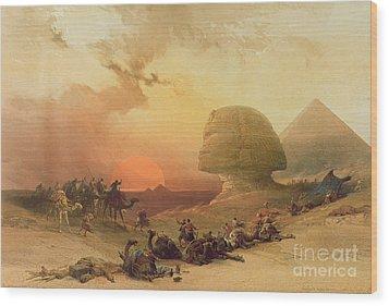 The Sphinx At Giza Wood Print by David Roberts