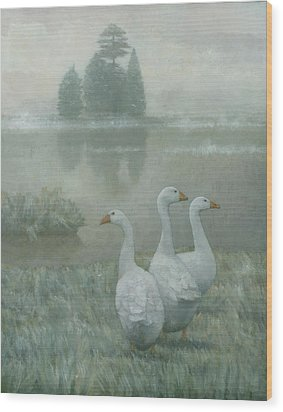 The Three Geese Wood Print by Steve Mitchell