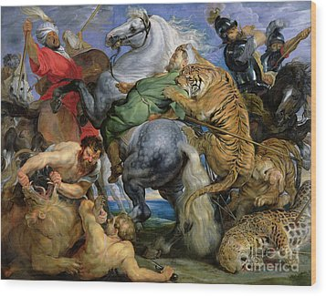 The Tiger Hunt Wood Print by Rubens