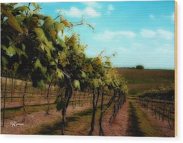 The Vineyard Wood Print by Jeff Swanson