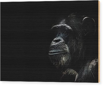 The Wise Wood Print by Martin Newman