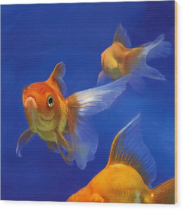 Three Goldfish Wood Print by Simon Sturge