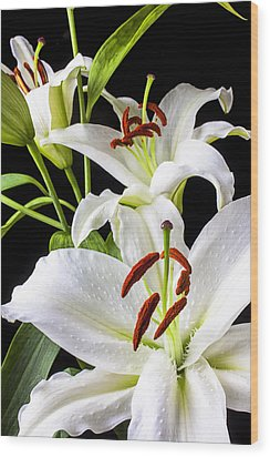 Three White Lilies Wood Print by Garry Gay