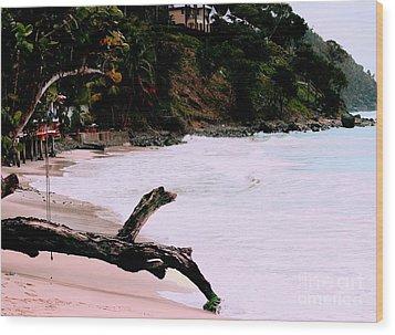 Tortola Bvi Wood Print by Tom Prendergast